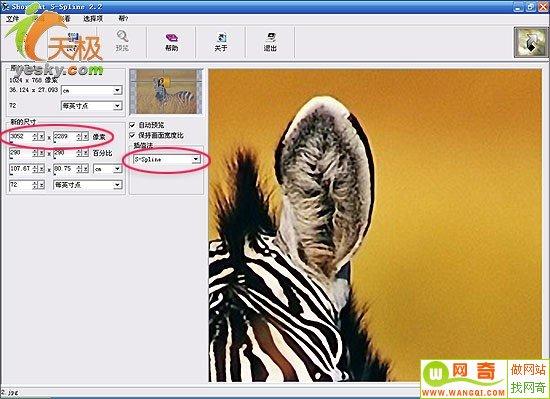 刘亦菲ps照片无马赛克